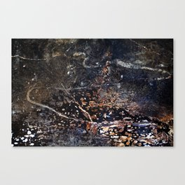 Abstract Forest Floor with Snake on Metal Canvas Print