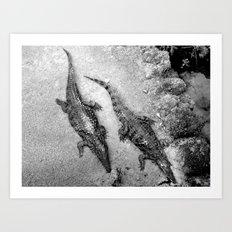 Aligators. Art Print