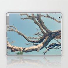 Driftwood Ladder Laptop & iPad Skin