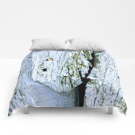 Weathered Barn Wall Wood Texture Comforters