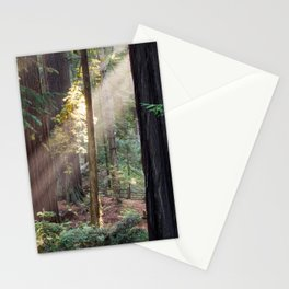 Hiding From The Dark Stationery Cards