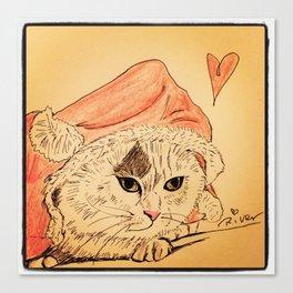 Day 853, 22 Dec, 2013 Canvas Print