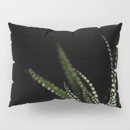 Haworthia Succulent plant cactus Pillow Sham