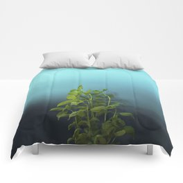 Shy and charming basil Comforters