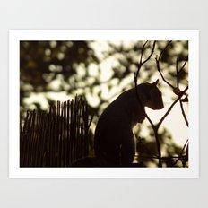Squirrel Silhouette Art Print