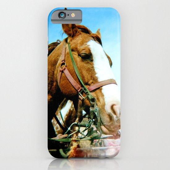 horses iPhone & iPod Case