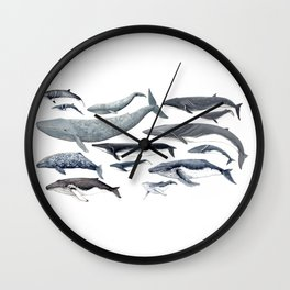 Whale diversity Wall Clock