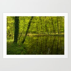 Forest lake pure relaxation for the Soul Art Print