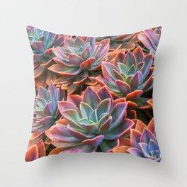 Succulents 3 Throw Pillow