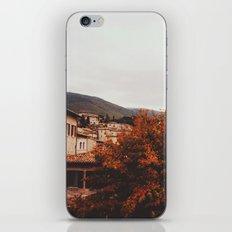 Assisi iPhone & iPod Skin