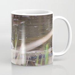Hooded Merganser Swims Coffee Mug