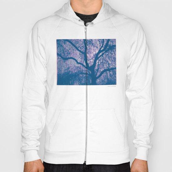 Cherry Blossom Blue Hoody