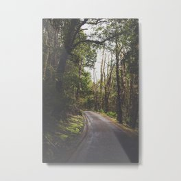 Tasmania | Cradle Mountain Road Metal Print