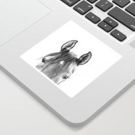 peekaboo horse, bw horse print, horse photo, equestrian print, equestrian photo, equestrian decor Sticker