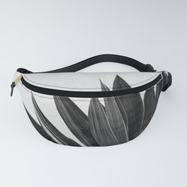 Agave Cactus Black & White Fanny Pack
