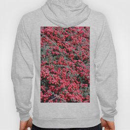 Small beautiful flower bush with small red fruits Hoody