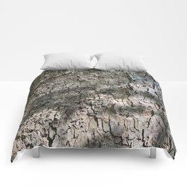 Sycamore Tree Bark Comforters
