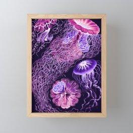 Ernst Haeckel Discomedusae Plate 8 Framed Mini Art Print