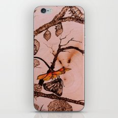 Caterpillar to Butterfly iPhone & iPod Skin