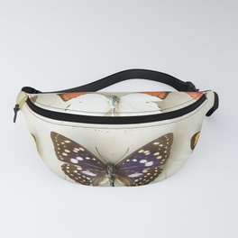 Butterflies and Moths Fanny Pack