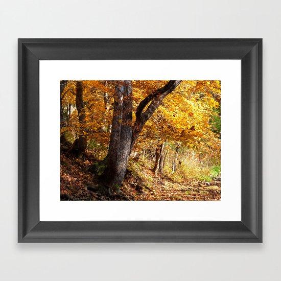 Fall afternoon IV Framed Art Print