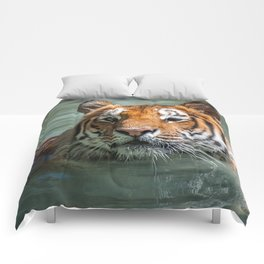 Cincinnati the Tiger in the Pool Comforters