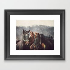 Nuzzle Framed Art Print