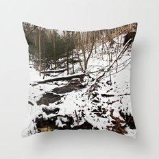 Downhill Stream  Throw Pillow