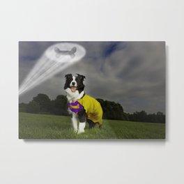 Superdog Metal Print