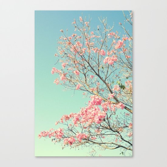 Spring Kissing the Sky Canvas Print