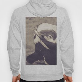 Adorable African Penguin Series 4 of 4 Hoody
