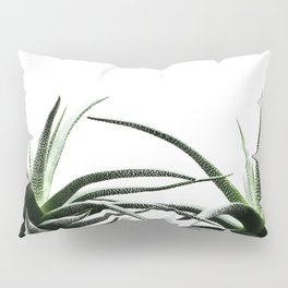 Succulents - Haworthia attenuata - Plant Lover - Botanic Specimens delivering a fresh perspective Pillow Sham