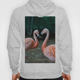 Love, Flamingos Hoody