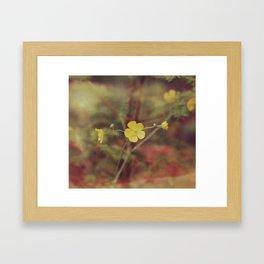 Country Summer Flowers Framed Art Print