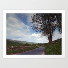 Road to Gunnerside Art Print