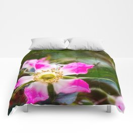 Dog rose day. Comforters