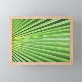 Palm Leaf Framed Mini Art Print