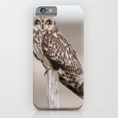 Short Eared Owl iPhone 6s Slim Case