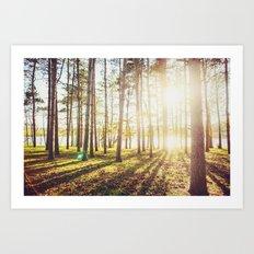 Fall Sunset Art Print
