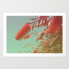 Red Fluffy Plant Art Print