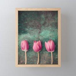 Three Red Tulips Framed Mini Art Print