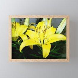 Yellow Lilies  Framed Mini Art Print
