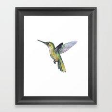 Hummingbird Watercolor Bird Animal Framed Art Print