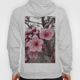 Fall Blossoms Hoody