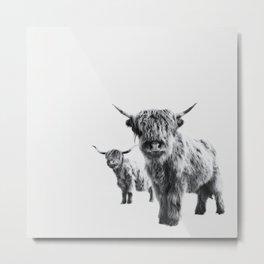 HIGHLAND COW - LULU & SARA Metal Print
