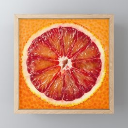Blood Grapefruit Framed Mini Art Print
