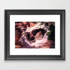 Lady Tarantula Framed Art Print