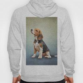 Drawing puppy Beagle Hoody