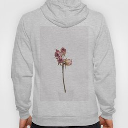 Buds of love Hoody