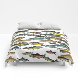Fish Beach Nautical multicolor and black and white Comforters